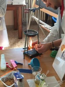 Laboratorio sull'alimentazione con le Pleiadi